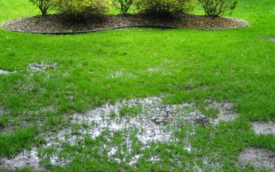6 Ways To Tell If Your Property Is Not Draining Properly and 6 Possible Ways to Fix It…