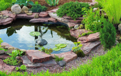 3 Types of Water Features That Can Take Your Landscaping Up a Notch…